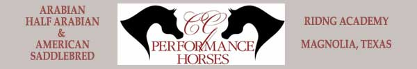 CG Performance Horses